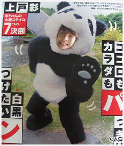 Panda711